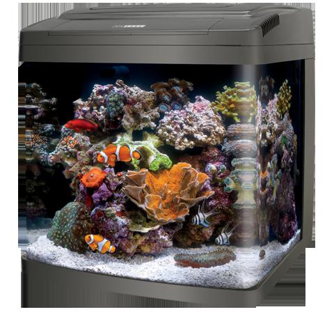 LED Bio Cube 32 Gallon