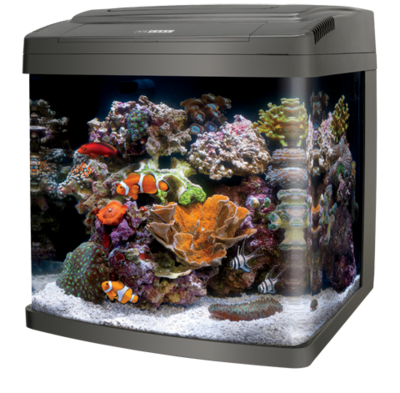 LED Bio Cube 32 Gallon