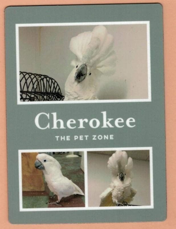 Cherokee Magnet Style 1