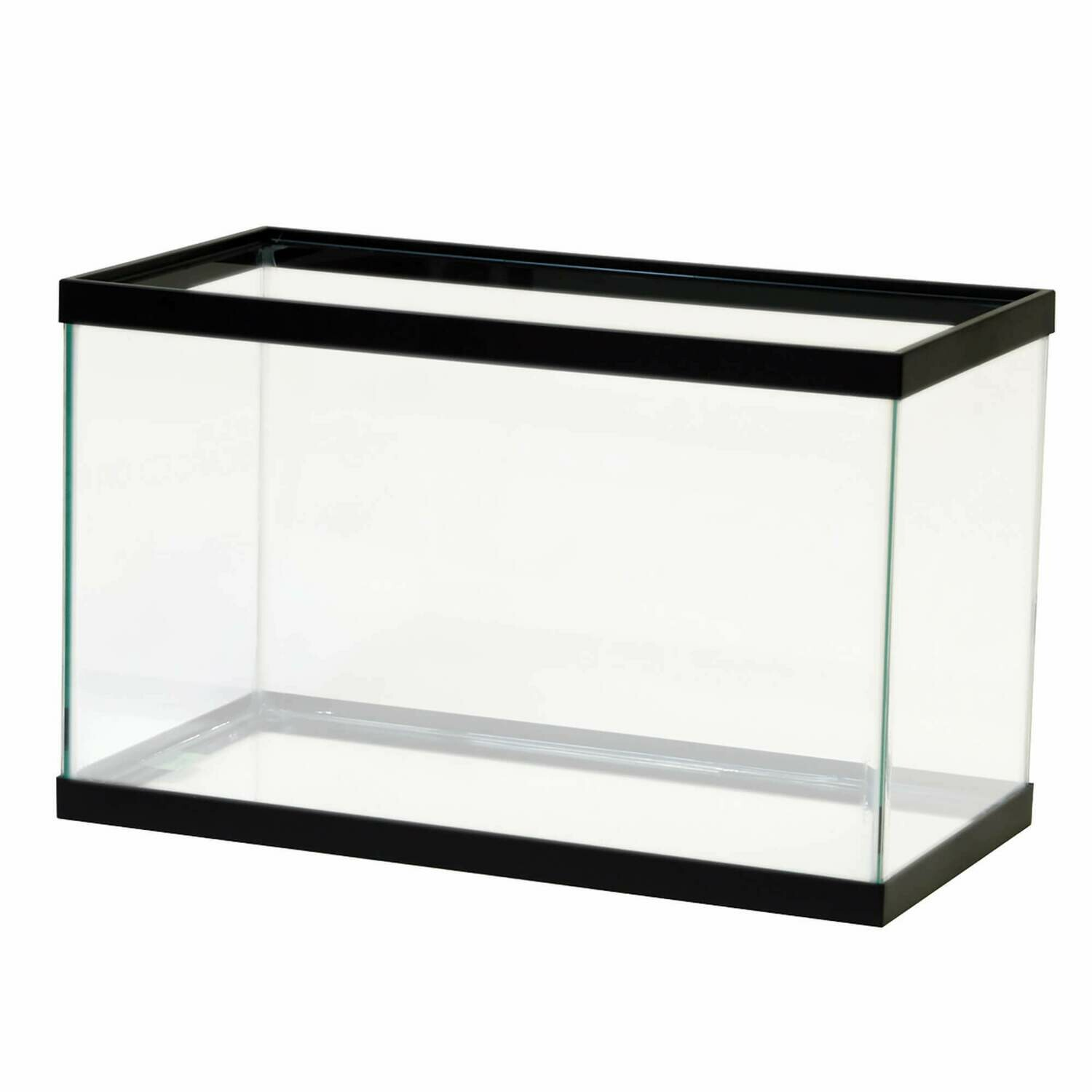 Aqeuon 10 Gallon Glass Aquarium