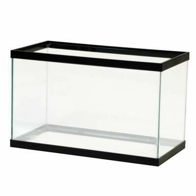 Aqeuon 10 Gallon Glass Aquarium
