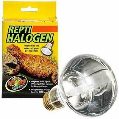 Repti Halogen ® Lamp