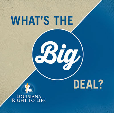 What's the Big Deal? Educational Booklet 00012