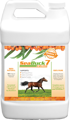 SeaBuck7 Equine 00001