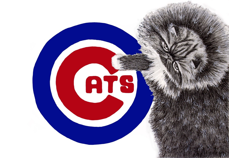 Chicago Cat 5 x 7