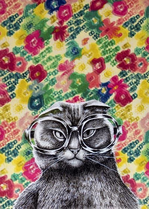 Far sighted kitty 5 x 7