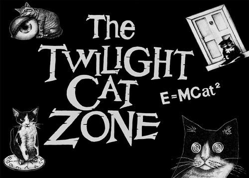The twilight cat zone 5 x 7