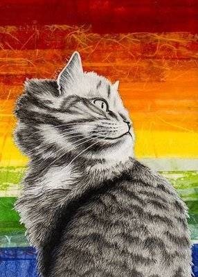 Pride cat 5 x 7