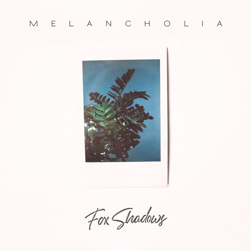 Fox Shadows - Melancholia