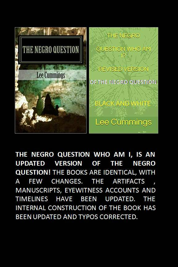 THE NEGRO QUESTION (WHO AM I) 00013