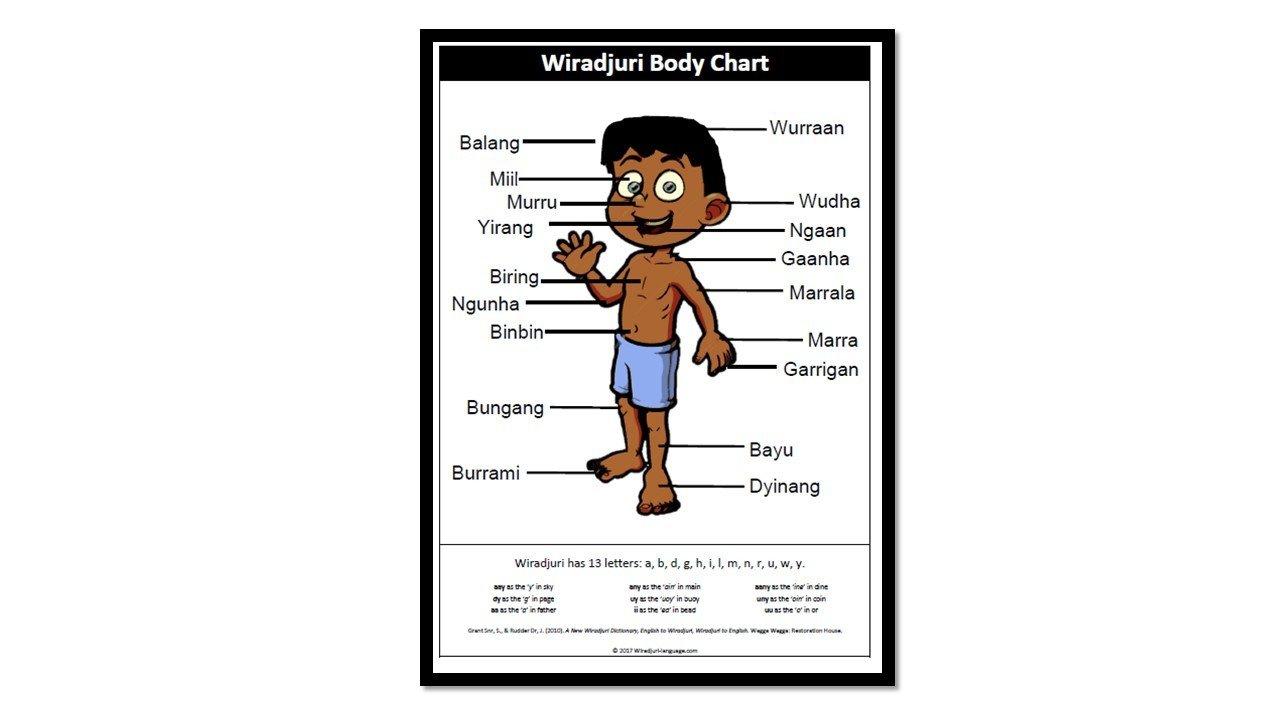 Wiradjuri Body chart A2