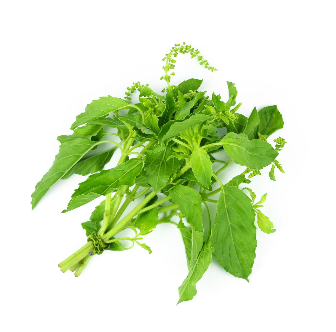 Hot Basil - 2oz