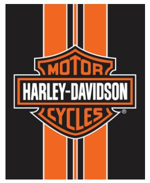 MOTOR HARLEY DAVIDSON CYCLES BEACH BLANKET
