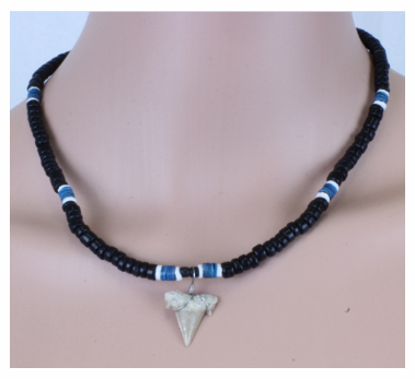 Shark Tooth Necklace With Beads