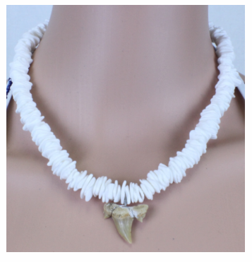 Shark Tooth Necklace - White