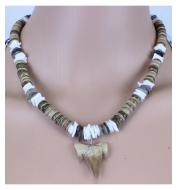 Shark Tooth Necklace - Shark Bites