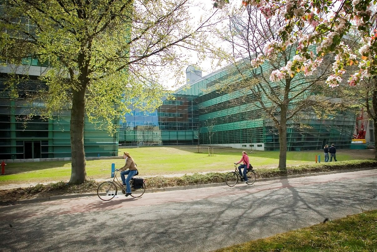 Spatial Planning  (Radboud - Yüksek Lisans)