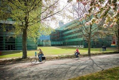 Molecular Life Sciences (Radboud - Yüksek Lisans)