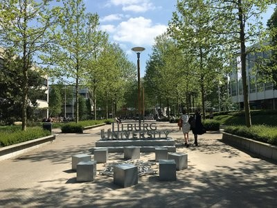 International Business Law (Tilburg - Yüksek Lisans)
