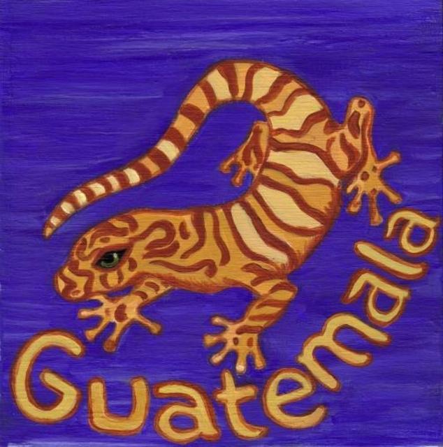 Guatemala Chajulense (light-medium) 00009