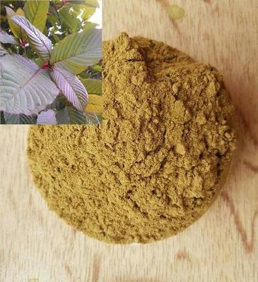 K Leaf Powder 100 Gram