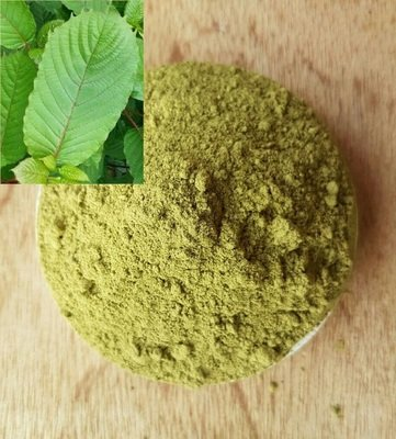 Green MD Powder 1 KG