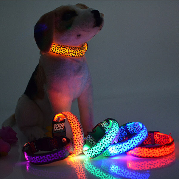 Light Up Collars Various Colors and Sizes
