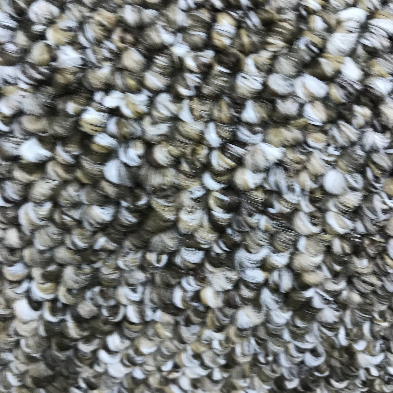 Carpet - Style: Oceanside - Color: Fudge Ripple - Price per Square Foot
