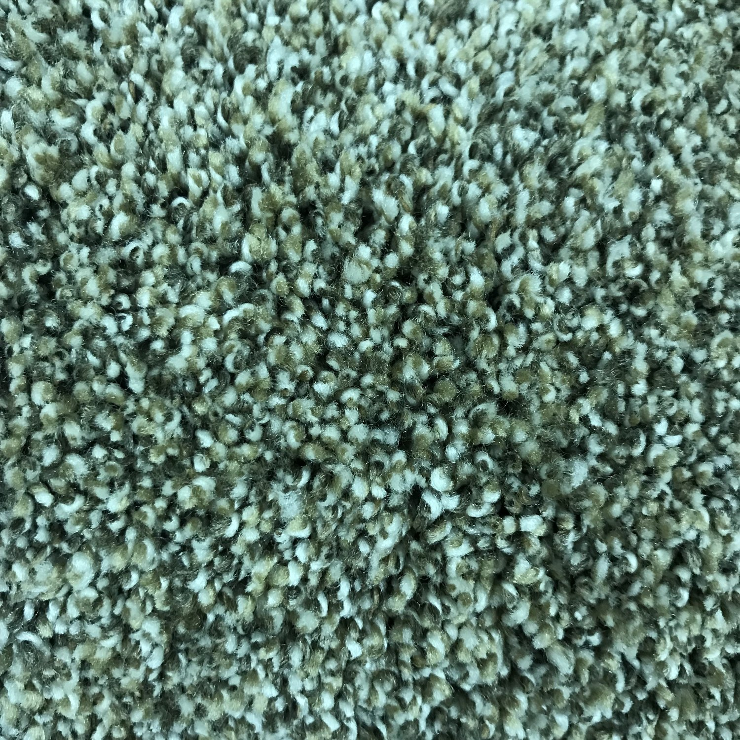 Carpet - Style: Simply Blended - Color: Five Star - Price per Square Foot