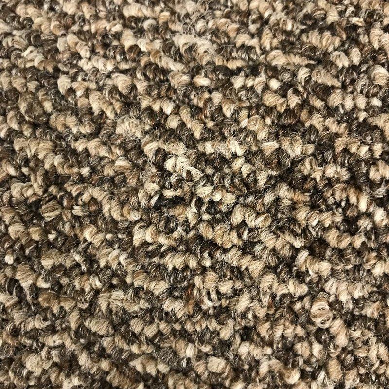 Kanga-Back Carpet - Style: Imagine - Color: Perfect Mix - Price per Square Foot