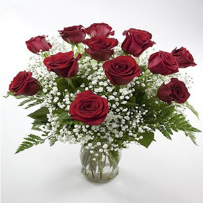 The speckled fox flowers gifts north liberty indiana florist 1 dozen red roses negle Images