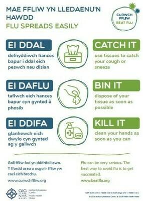 Beat flu poster/ curwch ffliw poster (Catch it Bin it Kill it/ Ei ddal Ei daflu Ei ddifa)