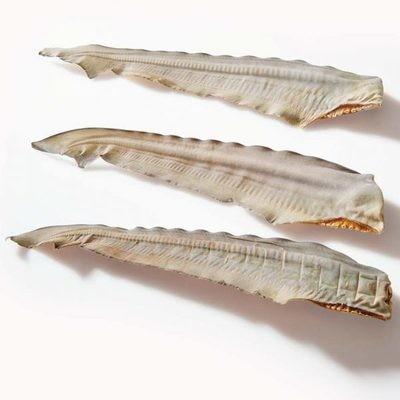 Shark Tails
