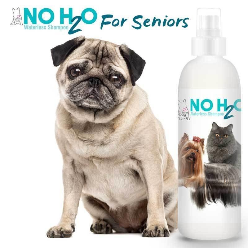 NO H2O  Water-less Spray Shampoo