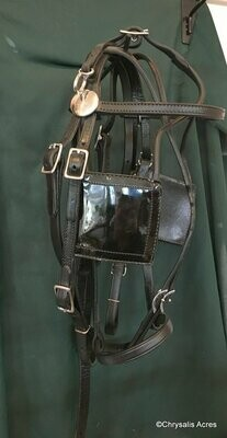 Driving Bridle - Square Blinkers