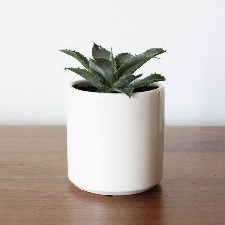 Minimal Ivory Vase Small