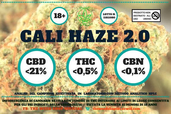 Cali Haze