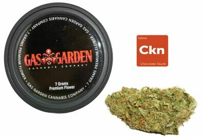 Chocolate Skunk (7g Premium Flower Tin Can) By Gas Garden