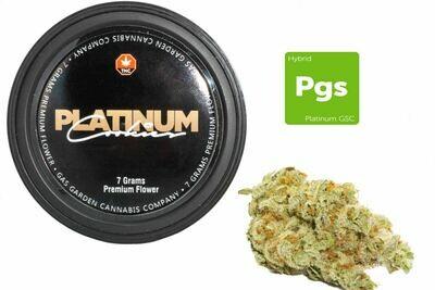 Platinum Cookies (7g Premium Flower Tin Can) By Gas Garden