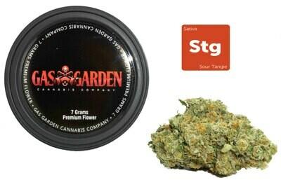 Sour Tangie (7g Premium Flower Tin Can) By Gas Garden