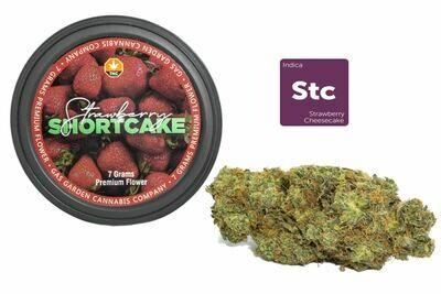 Strawberry Cheesecake (Aka Shortcake) (7g Premium Flower Tin Can) By Gas Garden