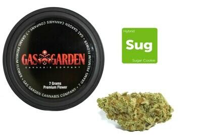 Sugar Cookie (7g Premium Flower Tin Can) By Gas Garden