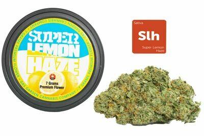 Super Lemon Haze (7g Premium Flower Tin Can) By Gas Garden