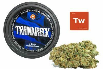 Trainwreck (7g Premium Flower Tin Can) By Gas Garden