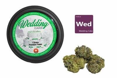 Wedding Cake (7g Premium Flower Tin Can) By Gas Garden