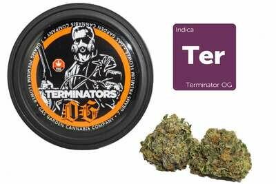 Terminators OG (7g Premium Flower Tin Can) By Gas Garden