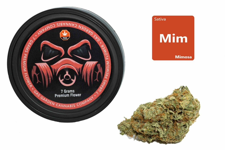 Mimosa (7g Premium Flower Tin Can) By Gas Garden