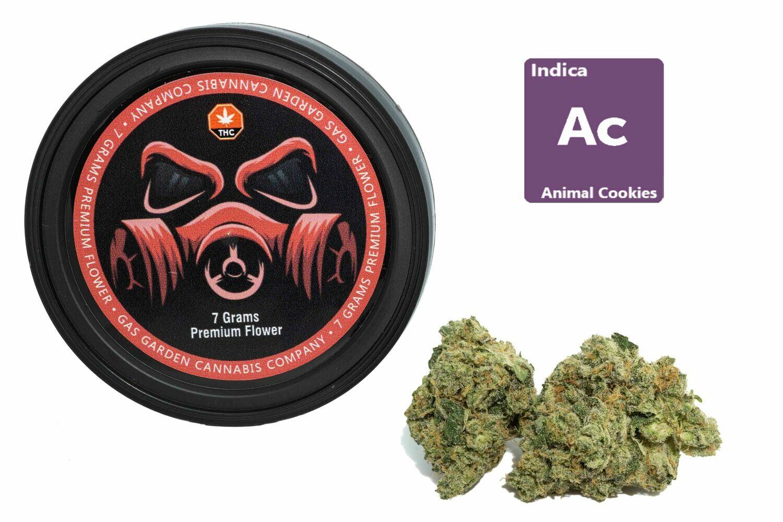 Animal Cookies #2 (7g Premium Flower Tin Can) By Gas Garden
