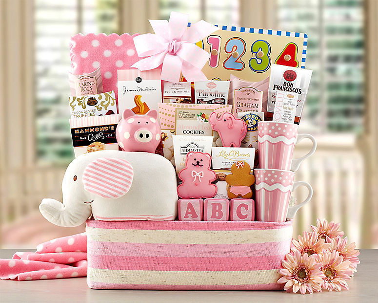 Baby Shower Gift Basket Welcome Home Collection FREE SHIPPING