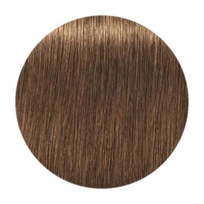 Краска для седых волос IGORA ROYAL ABSOLUTES 7-50 Средний русый золотистый натуральный